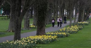 Walkers in Fairview Park, Dublin. File photograph: Nick Bradshaw/The Irish Times