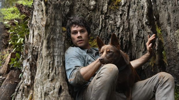 The goofily charming Dylan O'Brien and excellent dog Boy in Love and Monsters. Photograph: Paramount Pictures