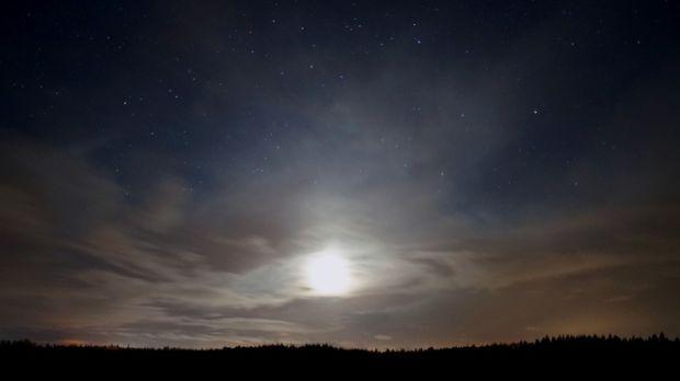 Night sky at Abbeyleix Bog, Co Laois.