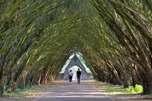 BEING TRANSPORTED: Walking through the Arches at Maynooth College, Co Kildare. Photograph: Alan Betson