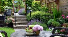 Eight clever ways to transform your garden this summer