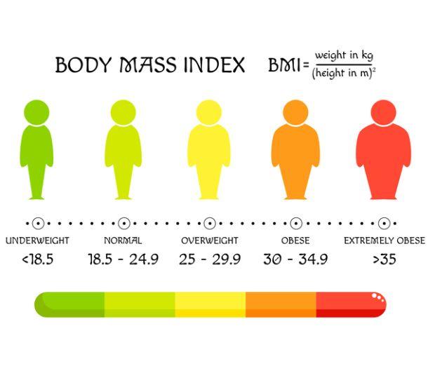 24 bmi BMI Body