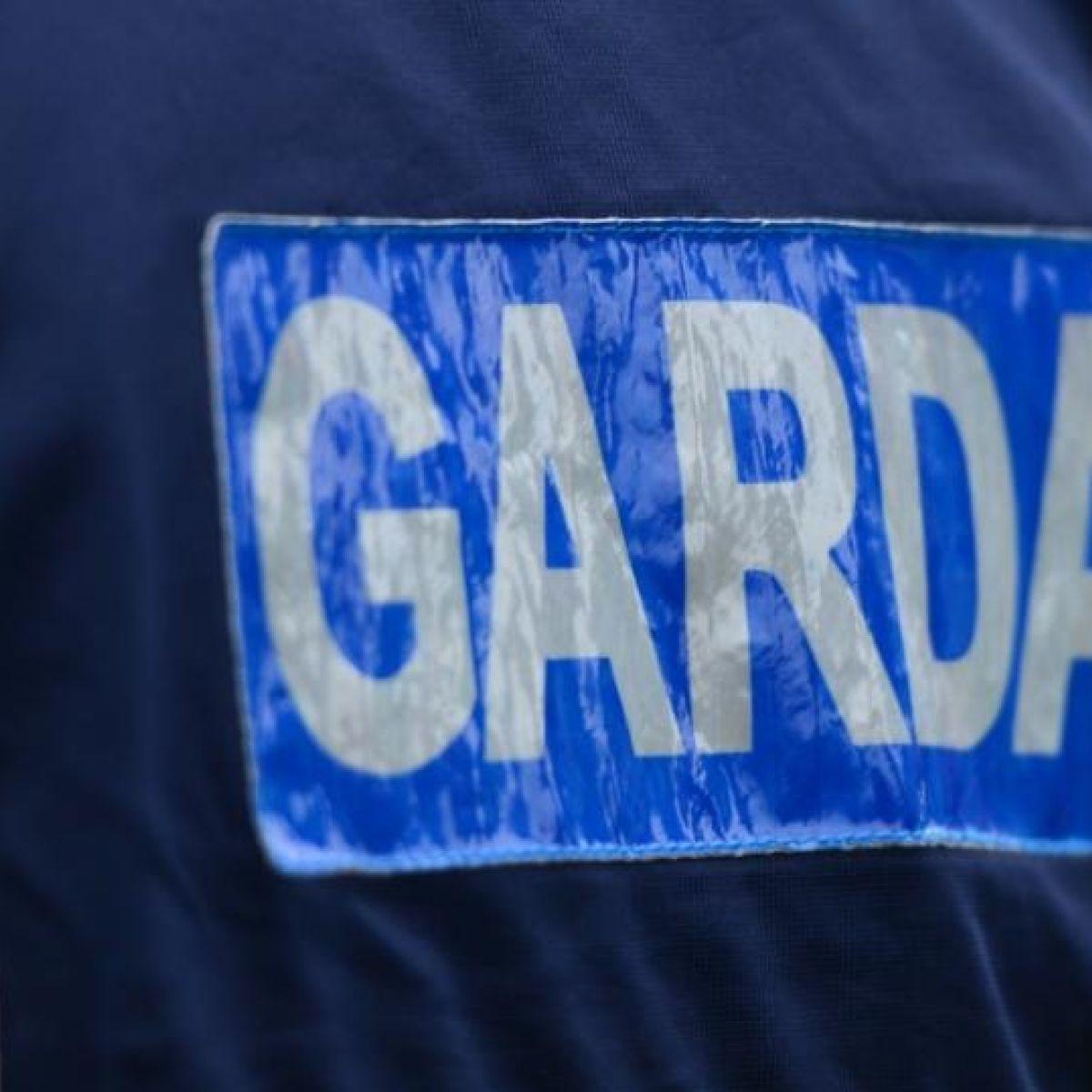 irishtimes.com - Conor Gallagher - Gardaí seize €100,000 worth of cannabis in Offaly