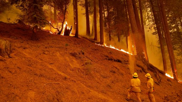 Firefighters spray water on the Dixie Fire in Plumas County. Photograph: John G Mabanglo/EPA